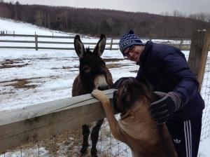 donkeyfriend